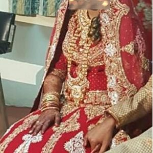 Indian Lehenga wedding dress