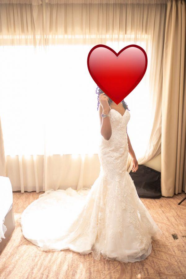 Mermaid Lace V-neck wedding dress