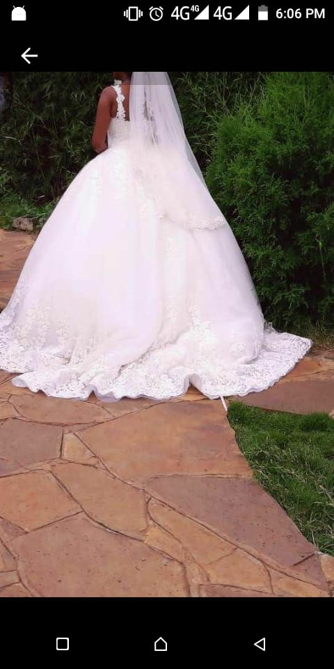 Embroidered cinderella ball gown wedding dress back view